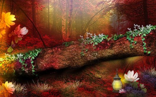 Обои Поваленный ствол дерева, обвитый ветками с зелеными листьями и цветами, лежащий в осеннем лесу, покрытым легкой туманной дымкой, рядом с деревом стоит зажженный фонарь
