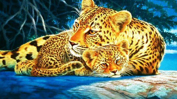 Обои Леопард -мама и детеныш мило лежат у дерева