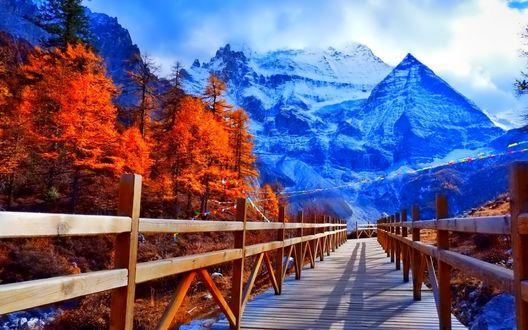 Обои Деревянный мост, проходящий через горное ущелье со стоящими у подножья гор деревьями, покрытыми яркими багряными листьями на фоне неба и величественных, красивых гор, шапки которых покрыты снегом и поднимающиеся выше белых облаков на небе