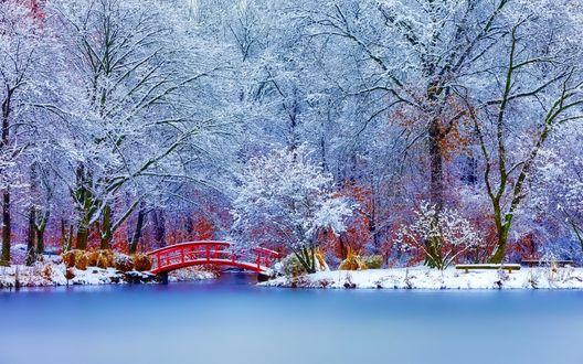 Обои Красивый, дугообразный пешеходный мостик красного цвета, проложенный через водоем, поверхность которого покрылась тонкой кромкой льда в окружении стоящих в парке деревьев, покрытых густым слоем инея