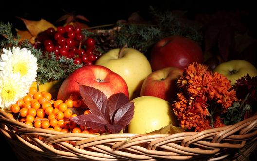 Обои Корзина с фруктами, ягодами и цветами