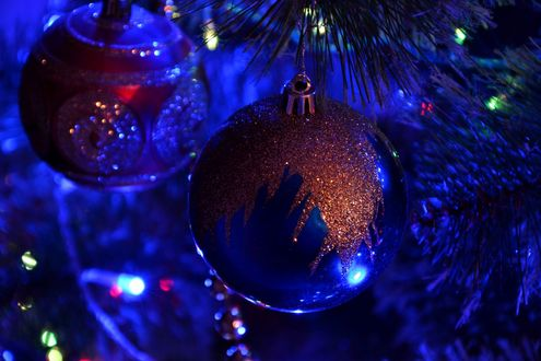 Обои Синие шары висят на елке среди огоньков гирлянды
