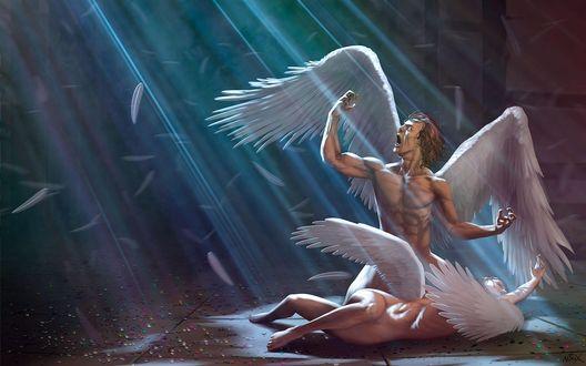Обои Мертвая обнаженная девушка-ангел лежит на полу среди разноцветного разбитого стекла, над ней сидит на коленях обнаженный ангел-мужчина и гневно грозит