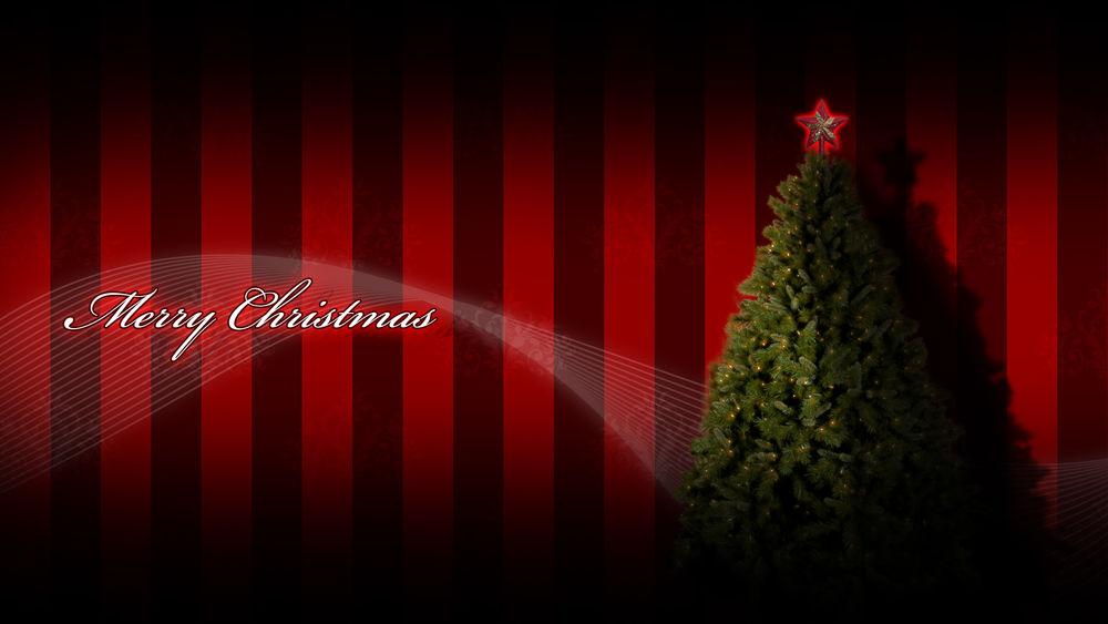 Обои для рабочего стола Зеленая елка со звездой на макушке стоит на фоне красно-черных обоев по которым идет надпись Merry christmas / С Рождеством