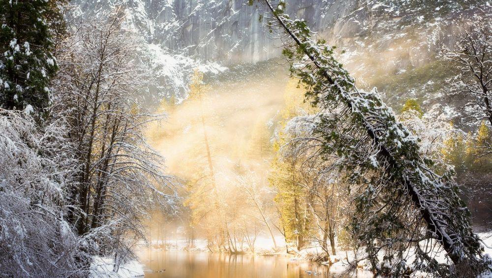 Обои для рабочего стола Река с деревьями покрытыми инеем