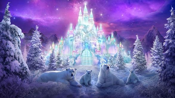 Обои Семья белых медведей лежит на снегу на фоне волшебного ледяного дворца