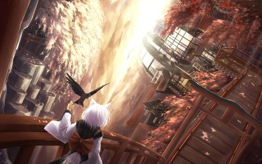 Обои Нэко девушка стоит на мостике с которого открывается вид на город