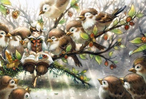 Обои Мальчик сидит на ветке и пишет ноты в книгу, рядом с ним сидят птицы