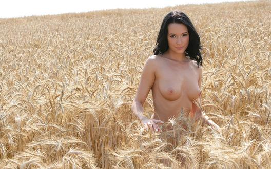 Голая в поле фото