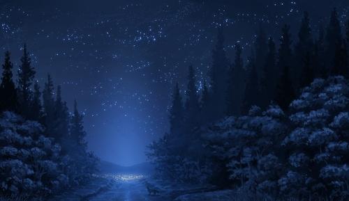 Обои ночное зимнее звездное небо над