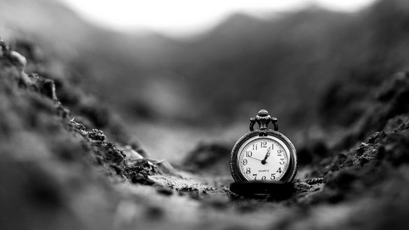 Обои Карманные часы на рухлой почве