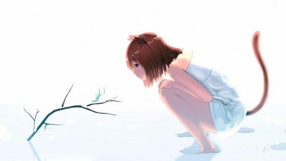 Обои Неко-девушка сидит на корточках в снегу, смотря на жука, сидящего на ветке, art by tagme (artist)