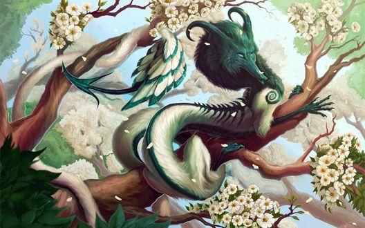 Обои Зеленый дракон сидит на цветущих ветках сакуры
