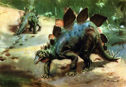 Обои Два стегозавра идут по песку