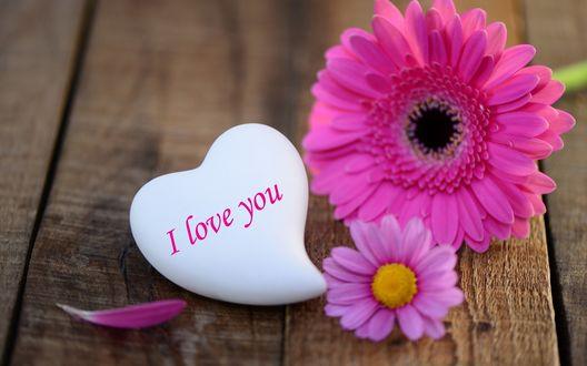 Обои Два цветка и сердечко (Love you / Я тебя люблю на деревянной поверхности)