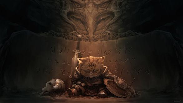 Обои Кот в доспехах и с мечом сидит раненый у стены с надписями, пародия на игру Скайрим / Skyrim