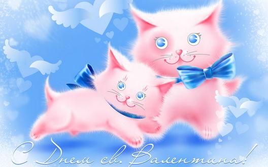 Обои Два розовых котенка на фоне летающих сердец - ангелов (С Днем Св. Валентина!)