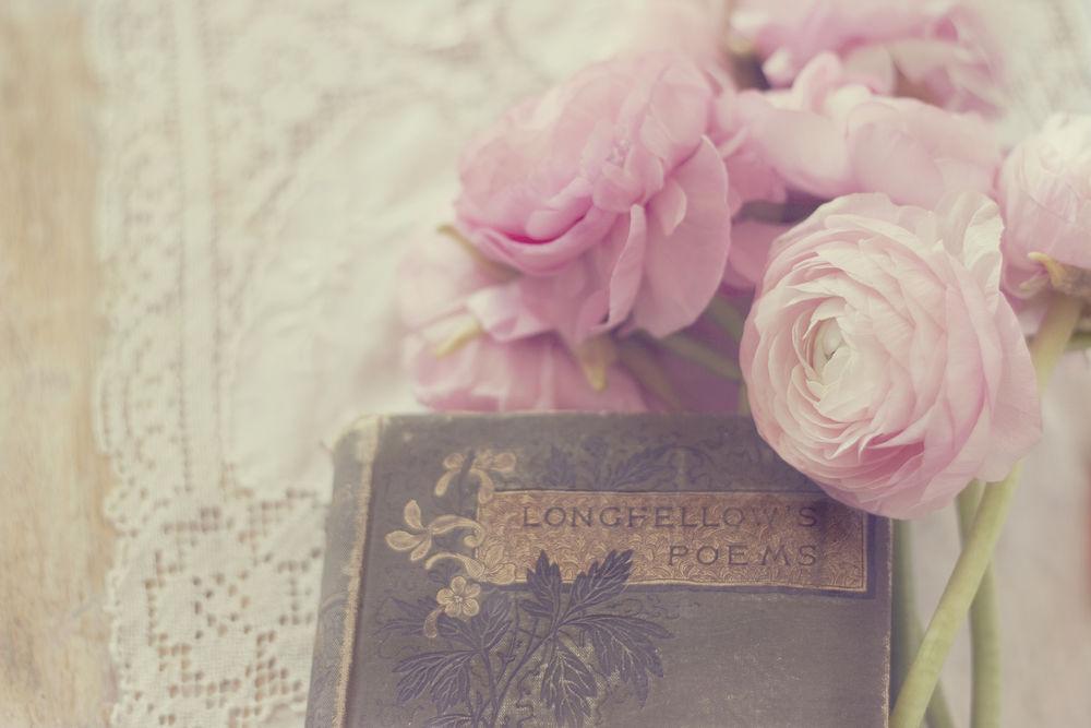 Обои для рабочего стола Букет розовых цветов лежит на книге