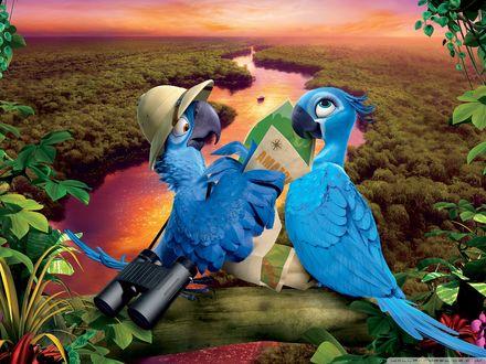 Обои Попугаи из мультфильма Рио / Rio сидят на ветке дерева над рекой во время заката