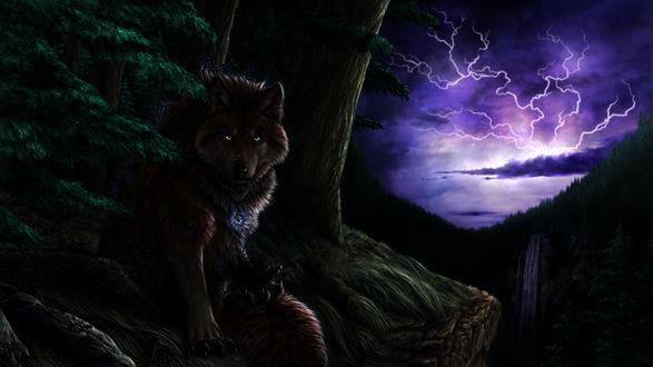 Обои Волк спрятался в кустах у дерева, на фоне молний и туч в ночном небе