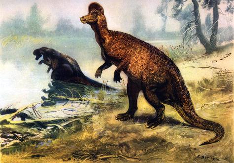 Обои Два динозавра коритозавра