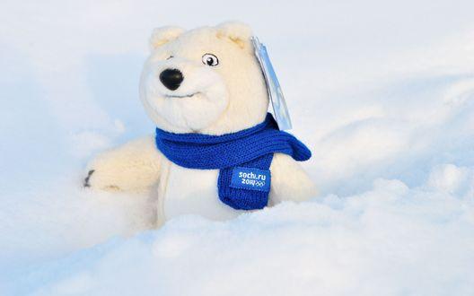 Обои Белый плюшевый медведь в синем шарфе с эмблемой олимпийских игр в Сочи (sochi. ru 2014) в снегу