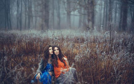 Обои Две девушки сидят в высокой сухой траве покрытой инеем