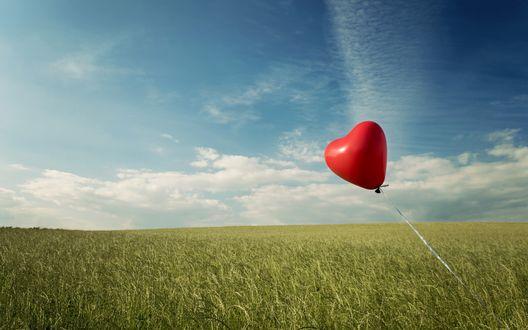 Обои Красный шарик в форме сердца в поле на фоне голубого неба