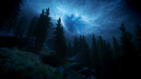 Обои Звездное небо на ночным лесом, компьютерная игра Skyrim / Скайрим