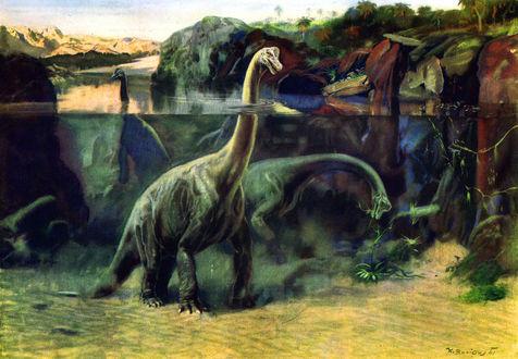 Обои Три брахиозавра в воде