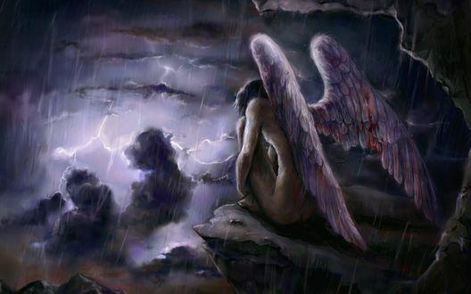 Обои Англе с окровавленными крыльями сидит под проливным дождем