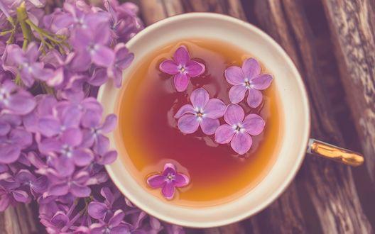 Обои Чашка чая, в которой плавают цветы сирени и лежащая рядом ветка сирени на деревяной поверхности