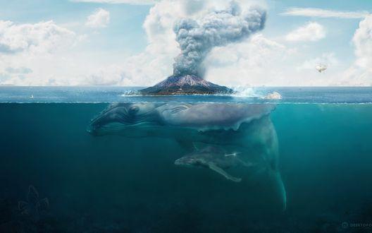 Обои Кит с детенышем под водой, на спине у кита дымящийся вулкан, рядом с которым летает вертолет