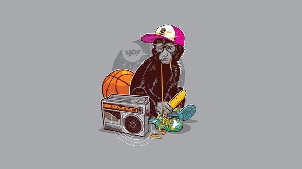 Обои Обезьяна в кепке, с бананом и кедами, сидит рядом с баскетбольным мячом и магнитофоном (Yo! / Йо!)