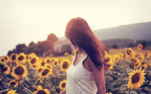 Фото брюнетки в поле с цветами