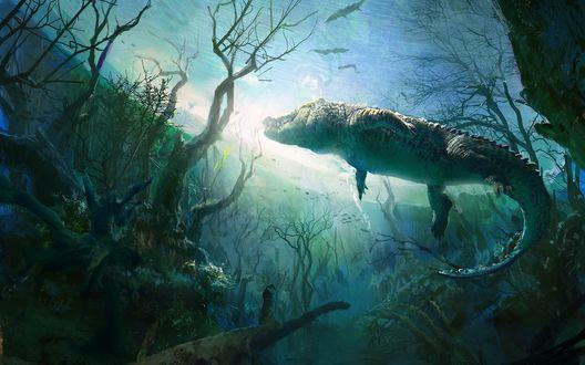 Обои Плавающий в воде крокодил