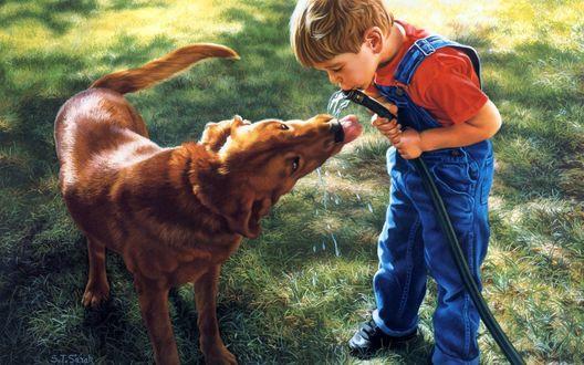 Обои Мальчик и золотистый ретривер пьют воду из шланга