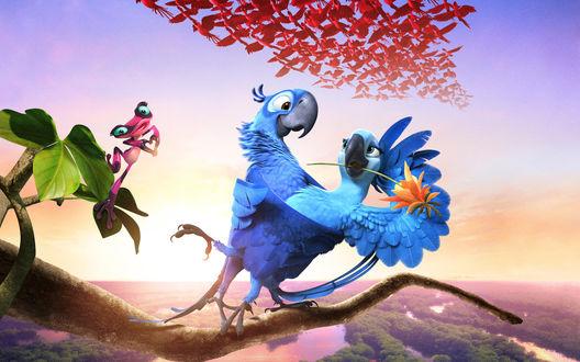 Обои Герои мультфильма Рио-2 / Rio 2 Голубчик / Blu и Жемчужинка / Jewel танцуют на ветке
