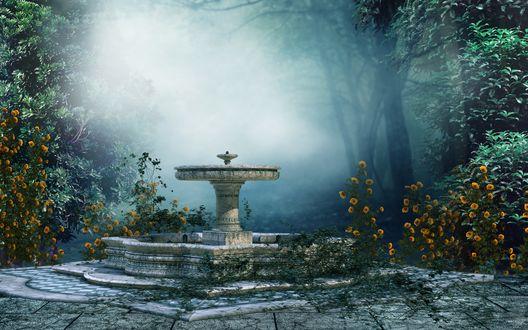 Обои Фонтан в окружении кустов на фоне тумана