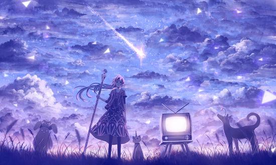 Обои Девушка с посохом, кролики, собака, кошка и телевизор на фоне ночного неба, art by bounin