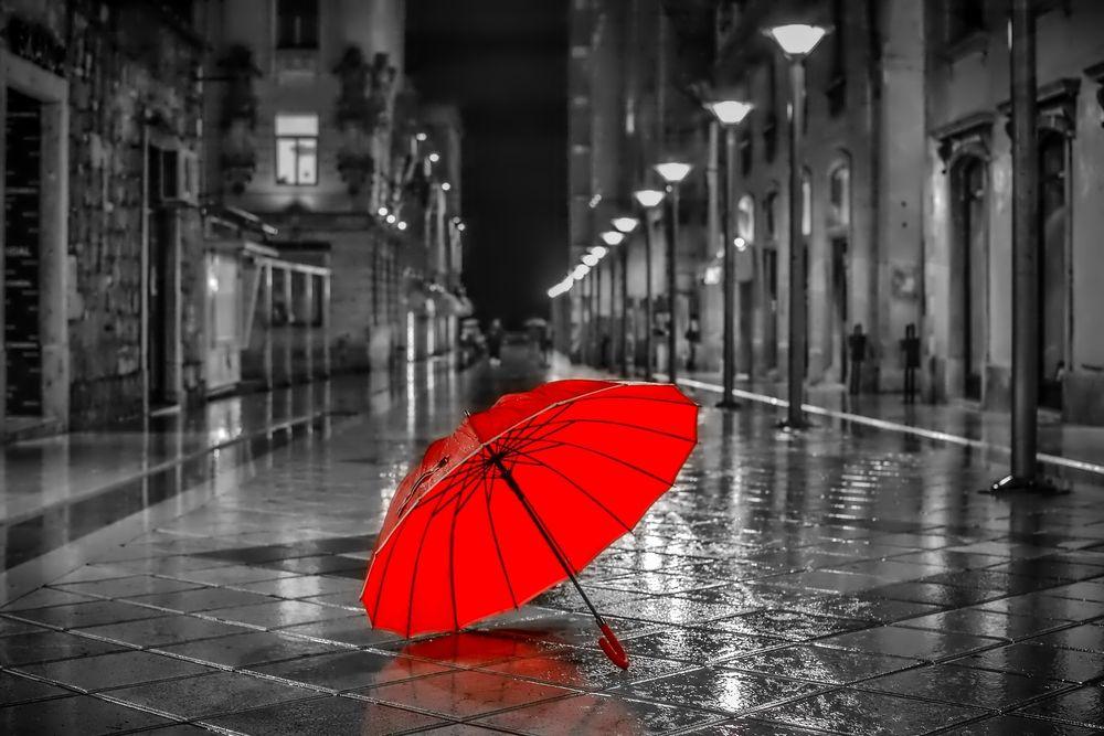 Обои Красный зонт после дождя, обои для рабочего стола Красный ZD910