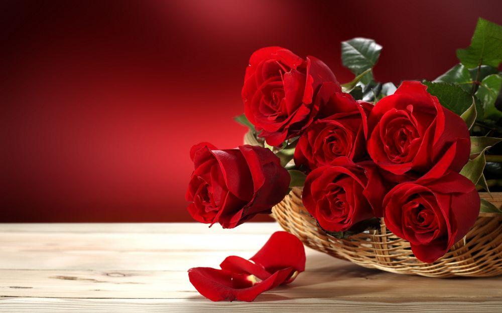 Цветы на красном фоне картинки  DreemPicscom  картинки