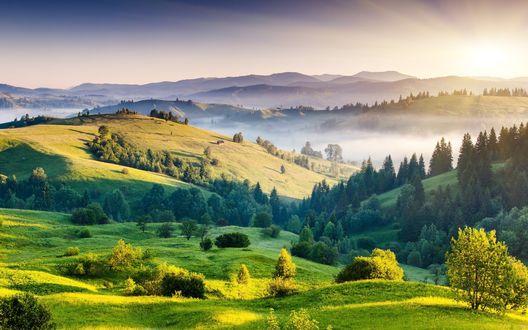Обои Холмы, покрытые лесами и туманом
