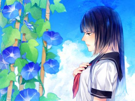 Обои Девушка в школьной форме смотрит на цветы