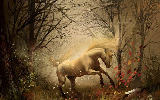 Обои Единорог резвится на фоне осеннего леса