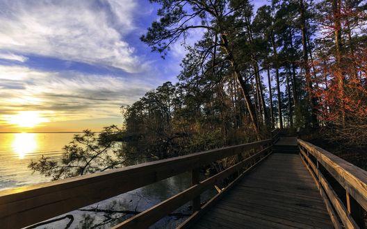 Обои Деревянный мост через реку в лучах восходящего солнца