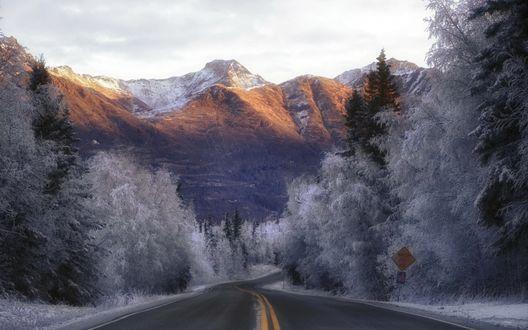 Обои Асфальтная дорога, проходящая между деревьями покрытыми инеем, у подножья заснеженных гор