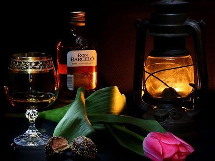 Обои Бокал рома стоит на столе, на котором лежит цветок тюльпана