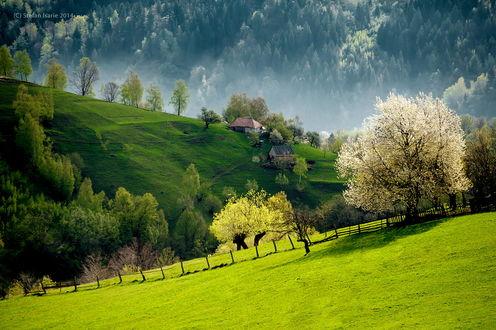 Обои Весна в пригорье, Словении / Slovenia, ву Stefan Isarie