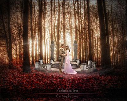 Обои Парень с девушкой стоят на фоне статуй в осеннем парке, работа запретная любовь, автор CryingSilence